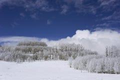 L'hiver scénique en montagnes Image libre de droits