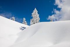 L'hiver sur Mt Seymour Photos stock