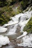 L'hiver sur un flot de montagne Photo libre de droits