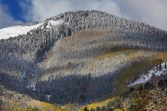 L'hiver tôt photos libres de droits