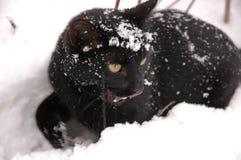 L'hiver tale3 Photo stock
