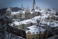 L'hiver Tallinn Image stock