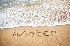 L'hiver tropical Photos libres de droits