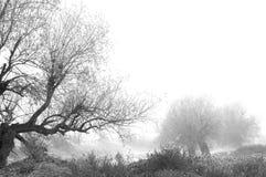 L'hiver vient Images libres de droits