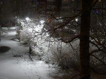 L'hiver vient un peu tard mais est chaque chose bien ? Photographie stock libre de droits