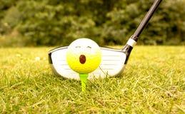 L'hobby di golf fotografia stock libera da diritti