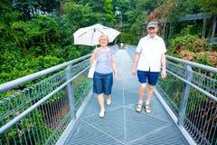 L'homme aîné et la femme appréciant une forêt marchent Photo stock