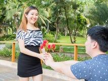 L'homme asiatique se met à genoux vers le bas donnant à son amie par groupe de roses Photographie stock libre de droits