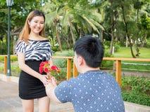 L'homme asiatique se met à genoux vers le bas donnant à son amie par groupe de roses Photographie stock