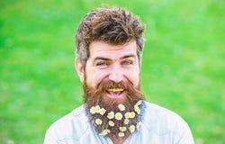 L'homme avec la barbe et la moustache apprécient le ressort, fond vert de pré Concept de masculinité Hippie sur le visage de sour images libres de droits