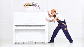 L'homme avec la barbe, le travailleur dans des combinaisons et le casque pousse le piano, fond blanc Le messager livre des meuble images libres de droits