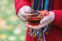 L'homme avec la tasse de la promenade de thé en parc d'automne avec l'érable part Image libre de droits