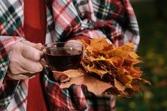 L'homme avec la tasse de la promenade de thé en parc d'automne avec l'érable part Photographie stock