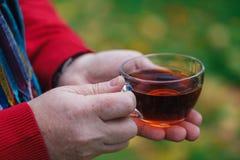 L'homme avec la tasse de la promenade de thé en parc d'automne avec l'érable part Images stock