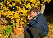 L'homme avec un panier tient le champignon Photo libre de droits