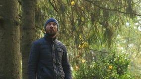 L'homme caucasien marche regardant la nature intacte de forêt banque de vidéos