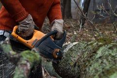 L'homme coupe le bois avec la scie électrique Images stock