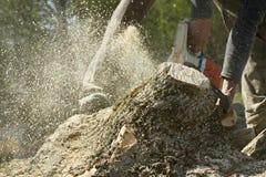 L'homme coupe un arbre tombé images libres de droits