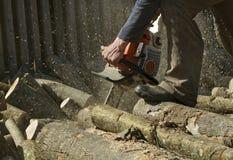 L'homme coupe un arbre tombé photographie stock libre de droits