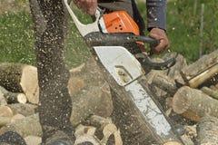 L'homme coupe un arbre tombé photographie stock