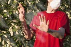 L'homme cultivé avec le respirateur médical sur ses expositions de visage arrêtent le geste à un nuage de pollen d'un arbre de fl photographie stock
