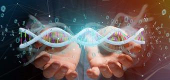 L'homme d'affaires contenant des données du rendu 3d a codé l'ADN avec le fi binaire Photo stock
