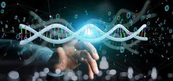 L'homme d'affaires contenant des données du rendu 3d a codé l'ADN avec le fi binaire Photographie stock libre de droits
