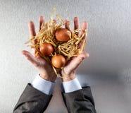 L'homme d'affaires remet présenter les oeufs viables en paille pour la conservation des aliments Photos libres de droits