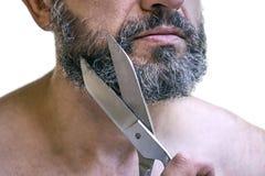 L'homme d'une cinquantaine d'années coupe sa barbe utilisant de grands vieux ciseaux Image stock