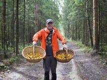 L'homme dans les bois avec des paniers des chanterelles de champignons Images libres de droits