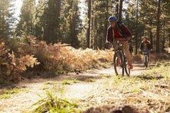 L'homme de couleur et les vélos caucasiens d'équitation de femme sur une forêt traînent Images libres de droits