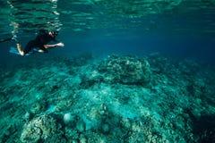 L'homme de Freediver explorent la vie marine dans l'océan, sous l'eau images stock