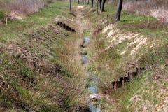L'homme de rivière de forêt a fait le canal de soulagement avec des niveaux de basse mer entourés avec l'herbe et les arbres non  image stock