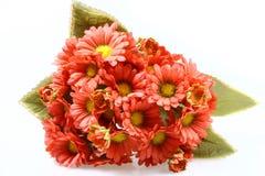L'homme a effectué des fleurs photos libres de droits