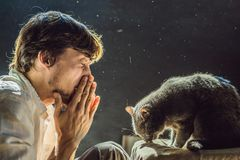 L'homme est allergique à un chat Un homme éternue étant donné qui à côté d'un animal familier photo stock