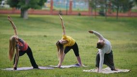 L'homme et les femmes - sportifs en parc - exécute l'exercice de yoga dehors dans un parc vert banque de vidéos