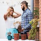 L'homme faisant des excuses pour les amies de arrosage fleurit Image stock