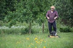 L'homme fauche la pelouse en été Image libre de droits