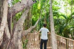 L'homme font la méditation sur la cabane dans un arbre photographie stock