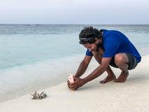 L'homme maldivien prend une photo d'un corail Photos stock