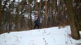 L'homme marche dans la forêt de pin d'hiver banque de vidéos