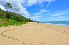 L'homme marche sur la plage d'Ellis dans l'Australie du Queensland de cairns photos libres de droits