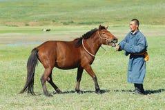 L'homme mongol apprivoise le jeune cheval sauvage dans une steppe vers Kharkhorin, Mongolie photos stock