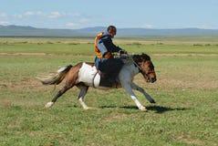 L'homme mongol utilisant le costume traditionnel monte le cheval sauvage dans une steppe dans Kharkhorin, Mongolie photographie stock libre de droits