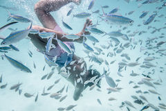 L'homme navigue au schnorchel dans l'eau merveilleuse du ` s d'océan Images stock
