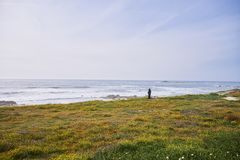 L'homme observent l'océan du rivage photos stock