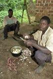 L'homme ougandais épluche le manioc tout en faisant cuire Photos libres de droits