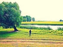 L'homme par l'arbre photo libre de droits
