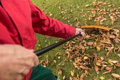L'homme plus âgé tout en nettoyant le jardin Photos libres de droits