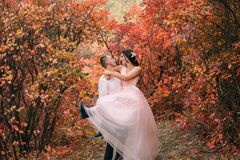 L'homme porte la fille dans des ses bras Sur la jeune mariée est une robe rose Les amants rient et regardent dans l'un l'autre de photographie stock